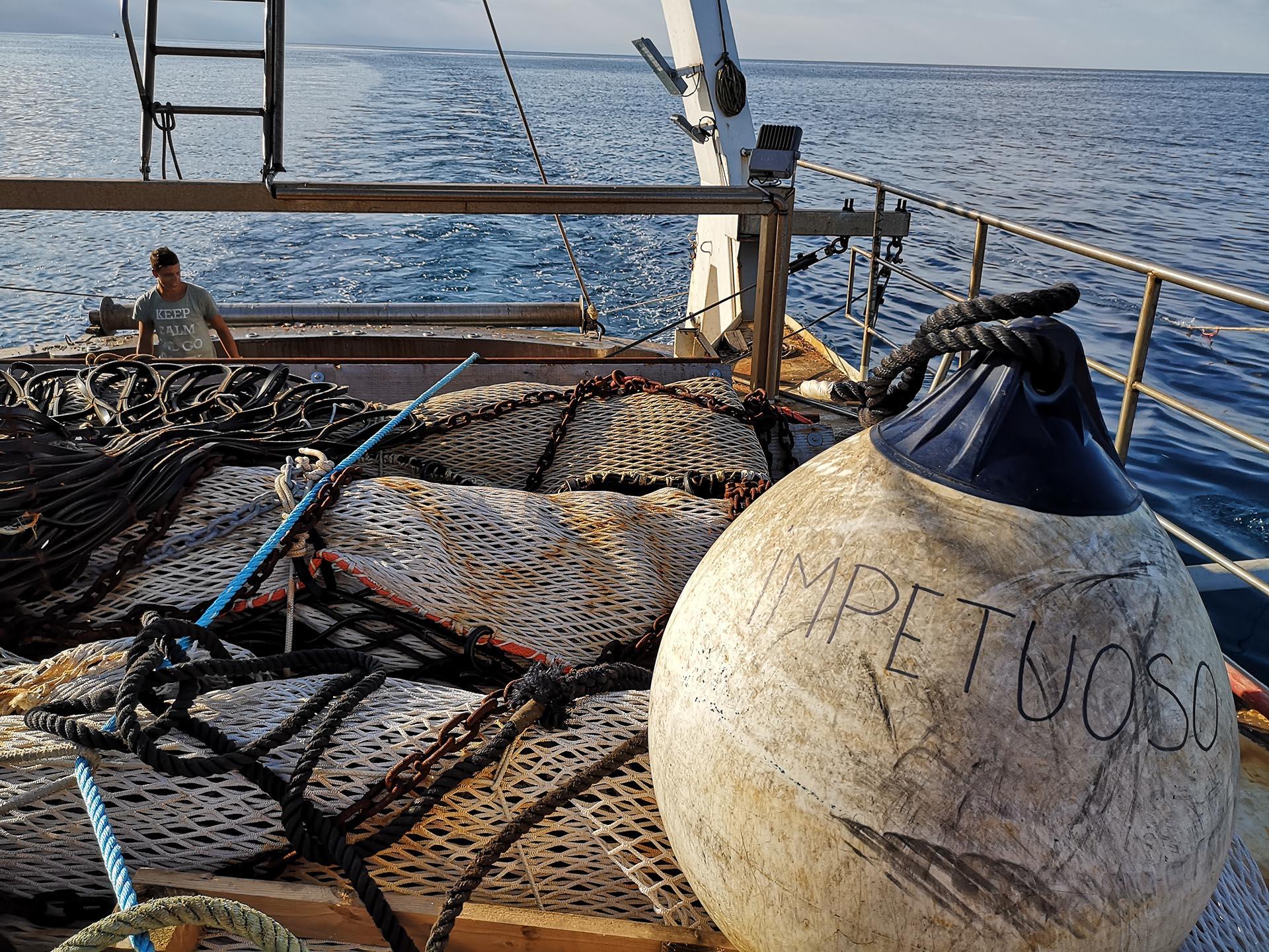 foufish-perche